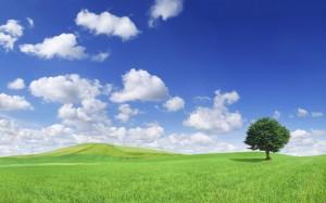 Ecologie: Le Soleil, Le Vent et la Terre alors ?