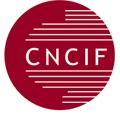 Selon la CNCIF le législateur doit donner un vrai statut aux conseillers en gestion de patrimoine indépendants…