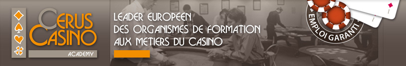 Avec ou sans le bac : devenir croupier dans les casinos&#8230;