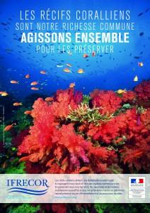 L'IFRECOR mobilise les élus d'Outre-mer pour la préservation des récifs coralliens, herbiers et mangroves…