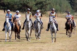 Caille : Courses Equestres d'Endurance samedi 15 Septembre 2012…