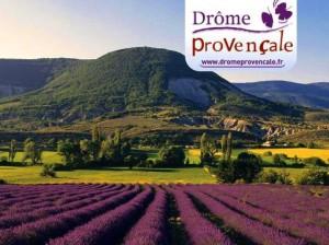 «La Drôme Provençale»…Une rentrée 2014 «Bien-Etre»…
