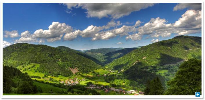 Allemagne Un Parc Naturel Inaugur 233 En For 234 T Noire