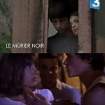 Deux courts-métrages ADASTRA FILMS diffusés sur France Télévisions en Janvier 2015…